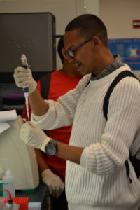 Male Student working with a test tube